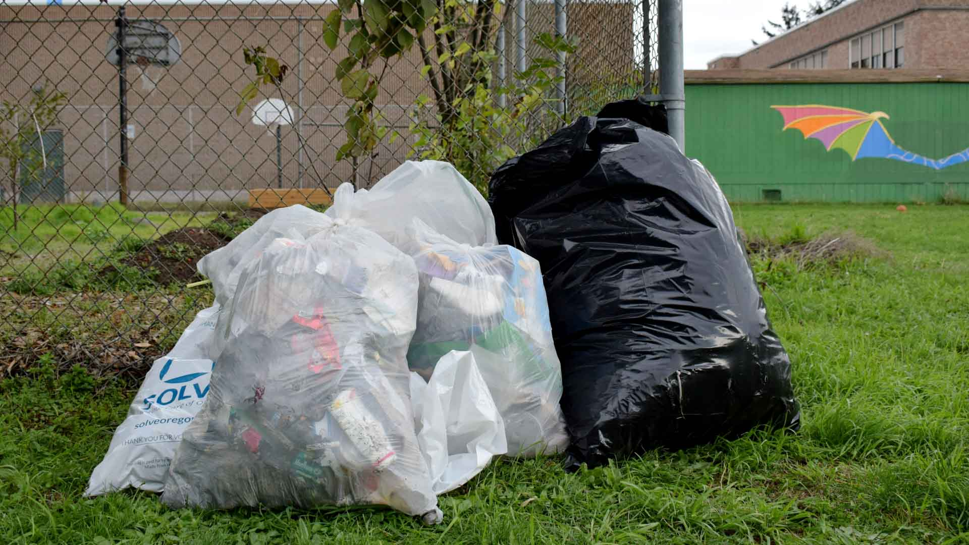 Bags of trash on a clean schoolyard
